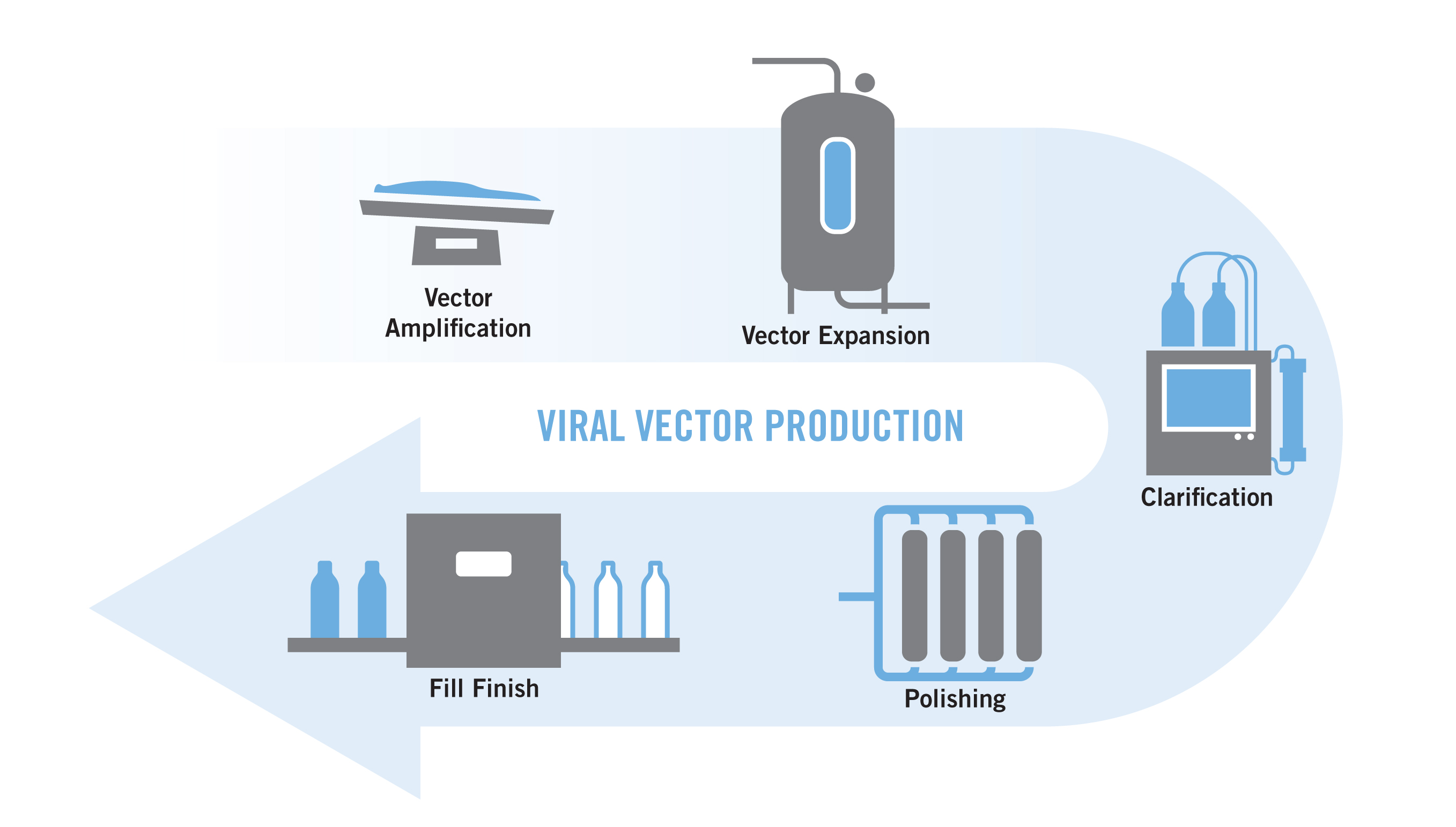 Viral vector production graphic